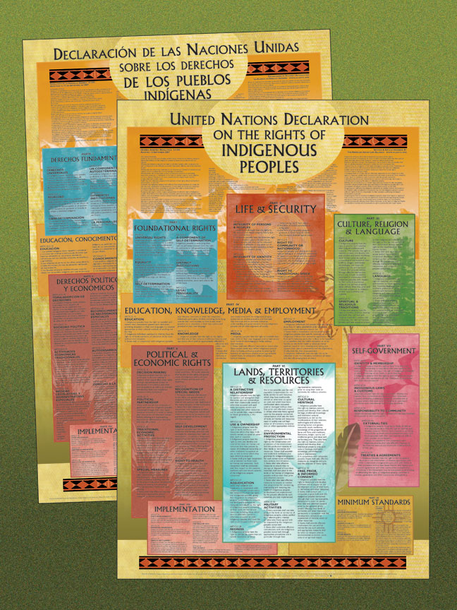 Poster  United Nations Declaration On The Rights of Indigenous Peoples  EnglishSpanish 2