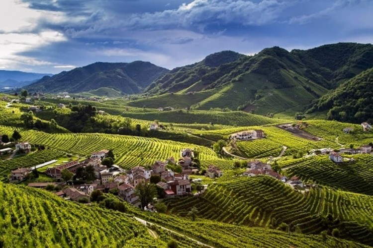 Prosecco Elevated – The Sparkling Wines of Prosecco Superiore DOCG
