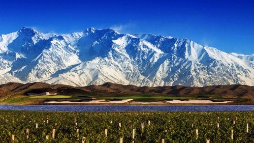 Wines of Familia Zuccardi – Malbec and Beyond
