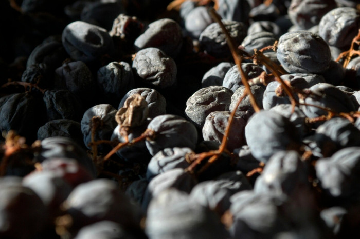 Valpolicella Amarone Ripasso Dried Grapes