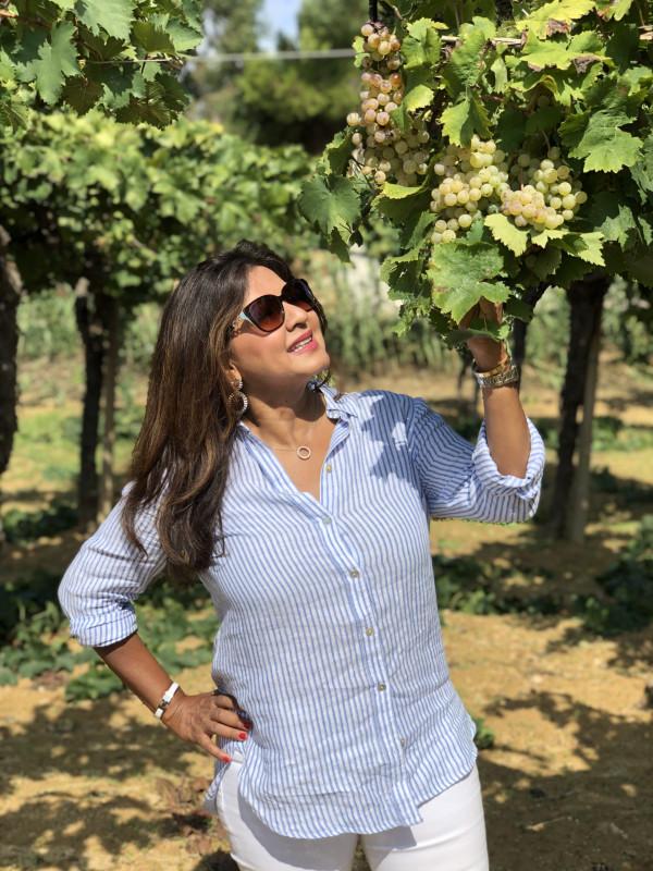 Gorghi Tondi Grillo Vineyards