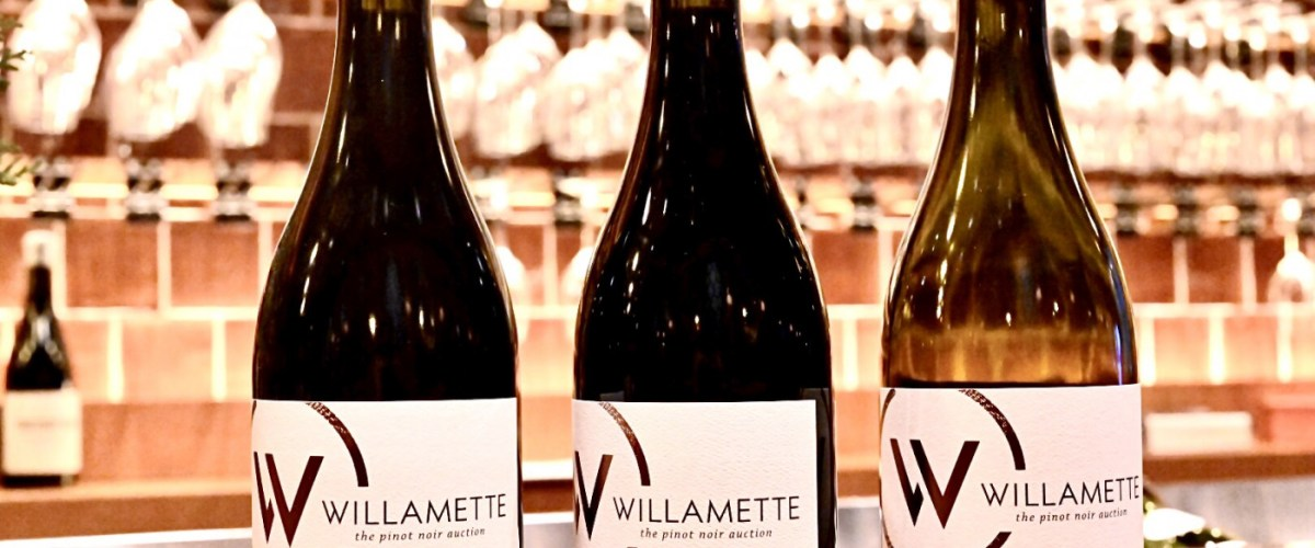 Willamette Valley Pinot Noir – A Focused Comparison on Sunny and Rainy Vintages