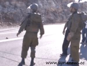 Israeli regime forces