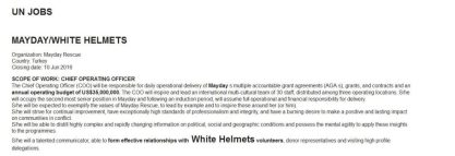 Looking for Chief Operating Officer for death squads White Helmets