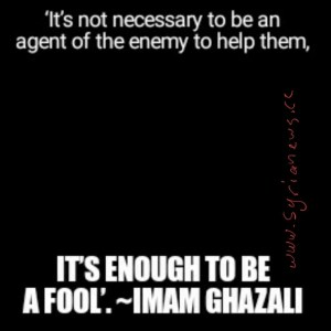 it is enough to be a fool