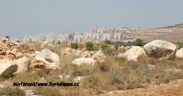 image-Illegal settlement Modi'in, from Bil'in.