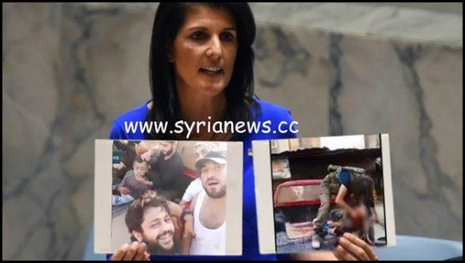 image-Trump Regime Ambassador to the UN Nikki Haley