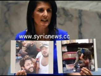 image-Trump Regime Ambassador to the UN Nikki Haley - False Flag