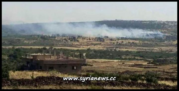 image-FSA Terrorists Lit Tens of Agricultural Acres in Quneitra - Hader - Archive