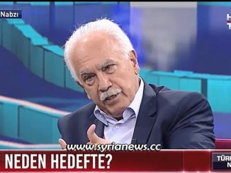 Turkish Perincek debate on Syria's Assad and Erdogan's policies