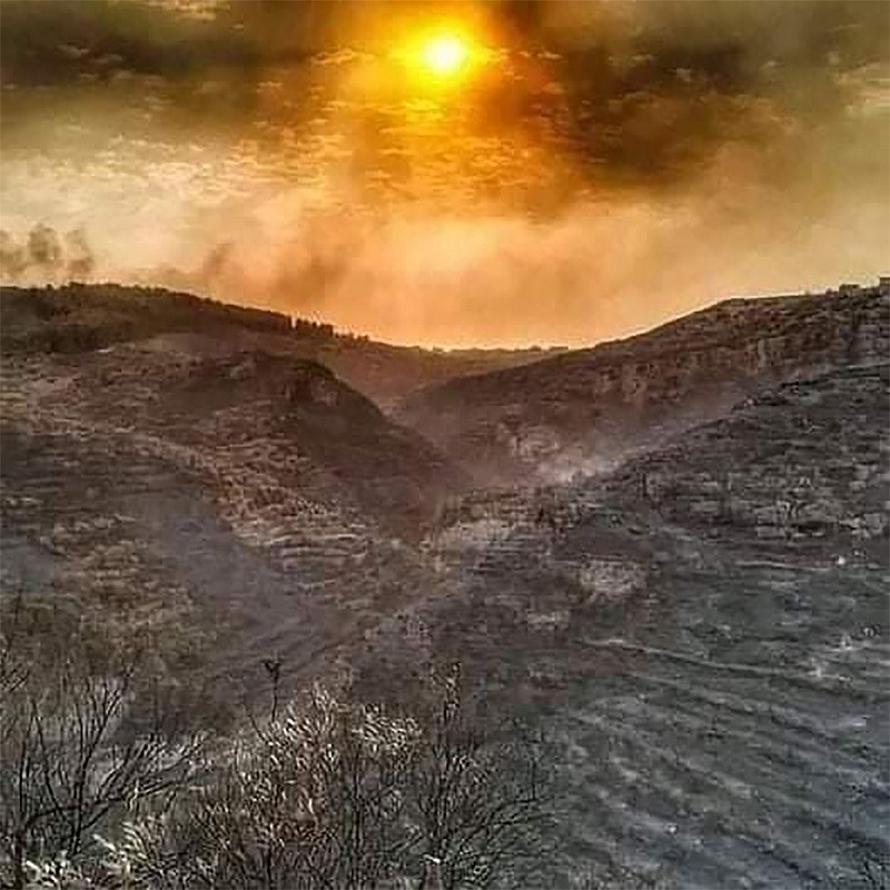 Syria forest fires - Latakia October 2020