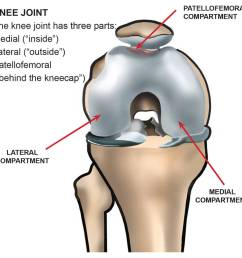 diagram showing the compartments of the knees joint [ 940 x 906 Pixel ]