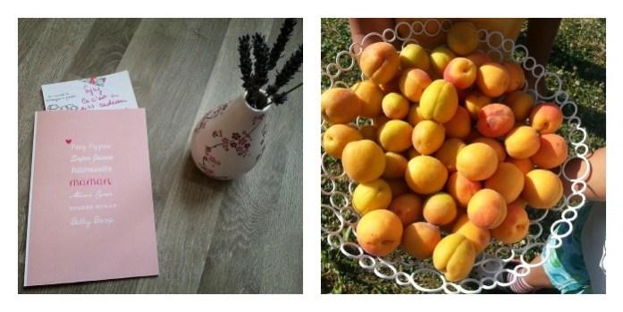 boudu abricots