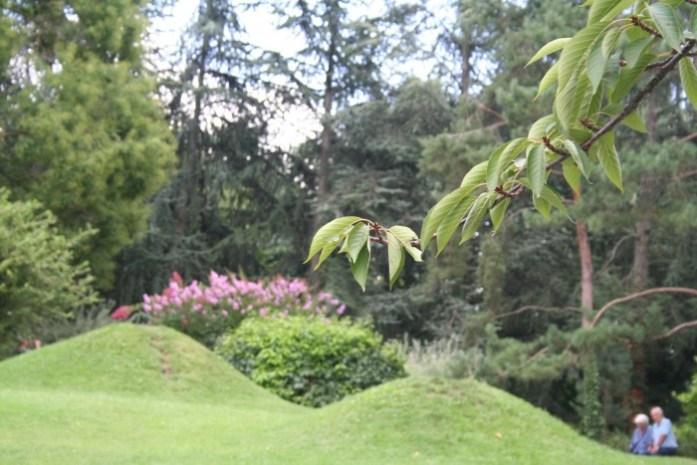 vallée jardin sysyinthecity