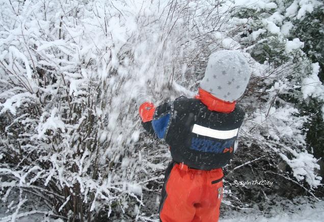 030215 toulouse neige sysyinthecity