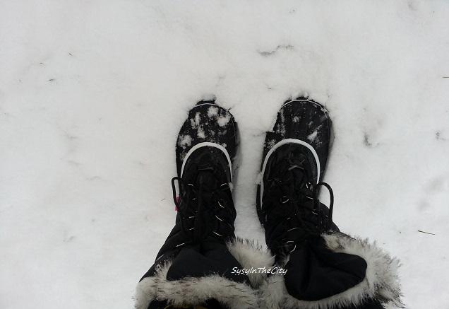 neige toulouse sysyinthecity