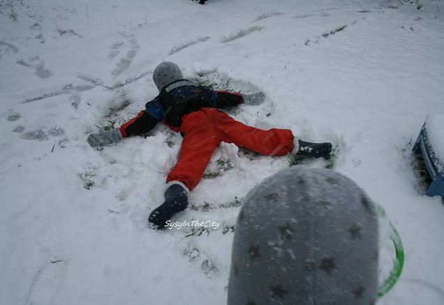 sysyinthecitytoulouse neige 030215