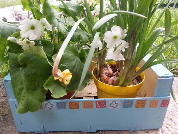 cagette fleurs DIY feutres giotto sysyinthecity