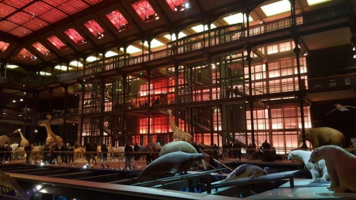 Grande galerie de l'évolution Paris SysyInTheCity (8)
