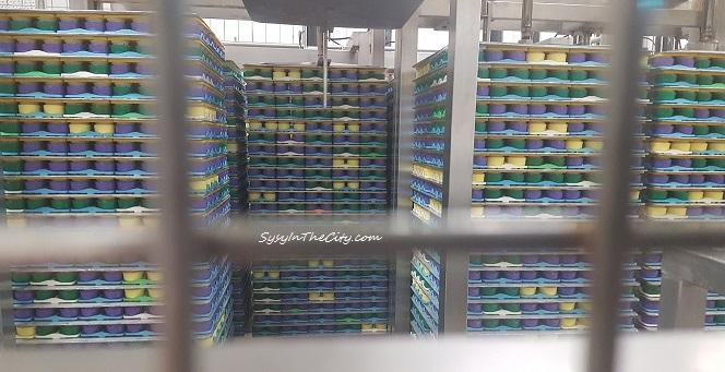 sysyinthecity-com-usine-mini-babybel-6