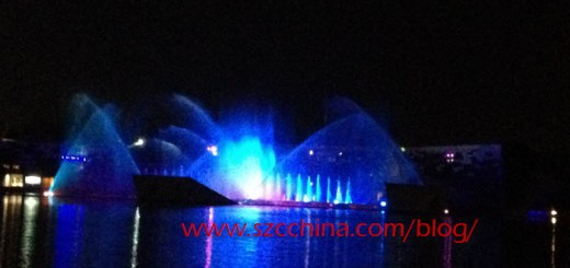 Shenzhen OCT Bay Fireworks and Water Show Photo 3