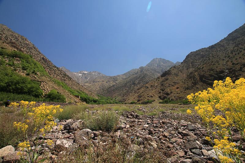 Koszt trekkingu na Jebel Toubkal
