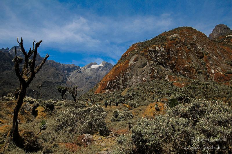 Najwyższe szczyty afrykańskich państw - Ruwenzori