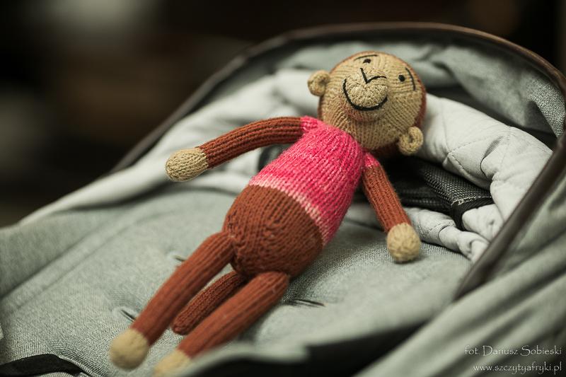 Małpka z Zimbabwe dla Mateuszka