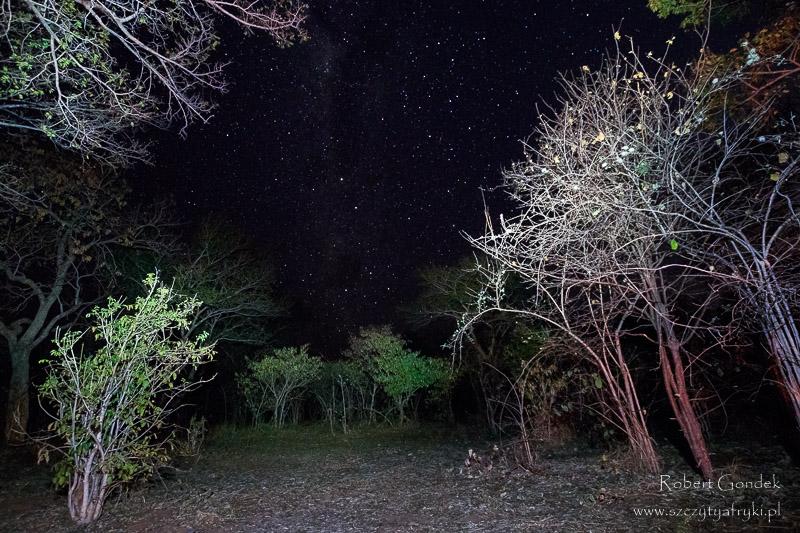 Nocne niebo w Parku Narodowym Chobe