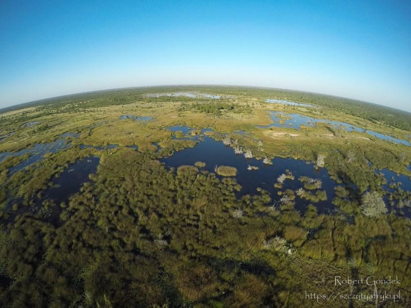 Rozlewiska rzeki Okawango w Botswanie