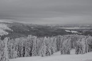 Karkonosze zimą w czerni i bieli