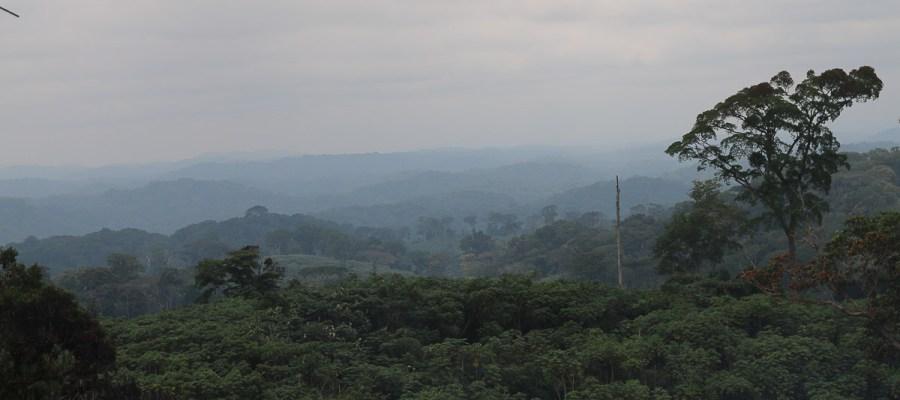 Widok z Mount Iboundji