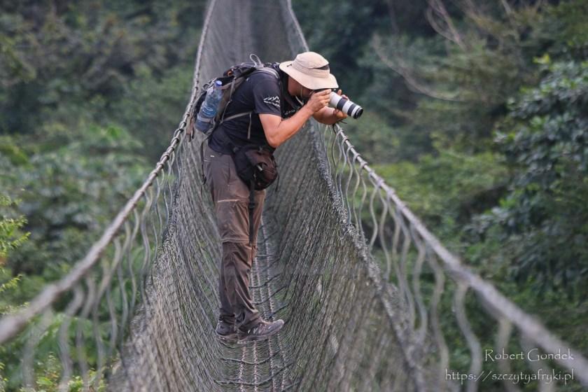 Wiszący most - Park Lekedi w Gabonie