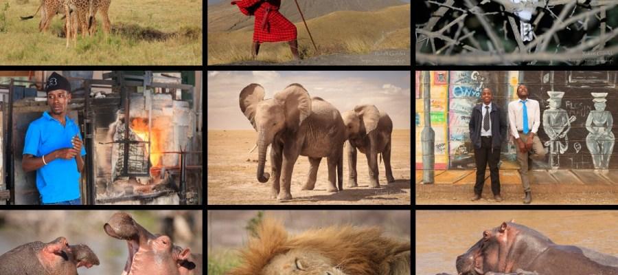 Najlepsze zdjęcia z Afryki w 2019 roku