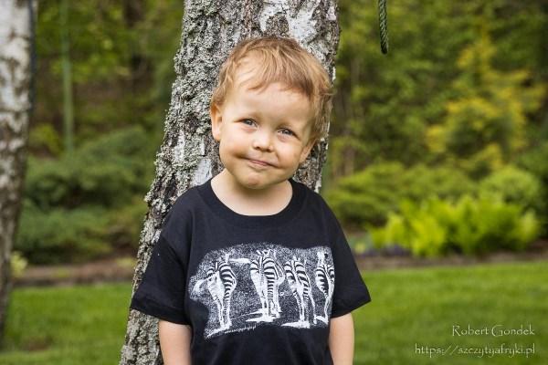 T-shirt z zebrami