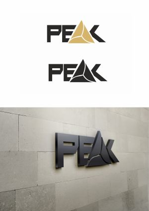 Logo Design Peak