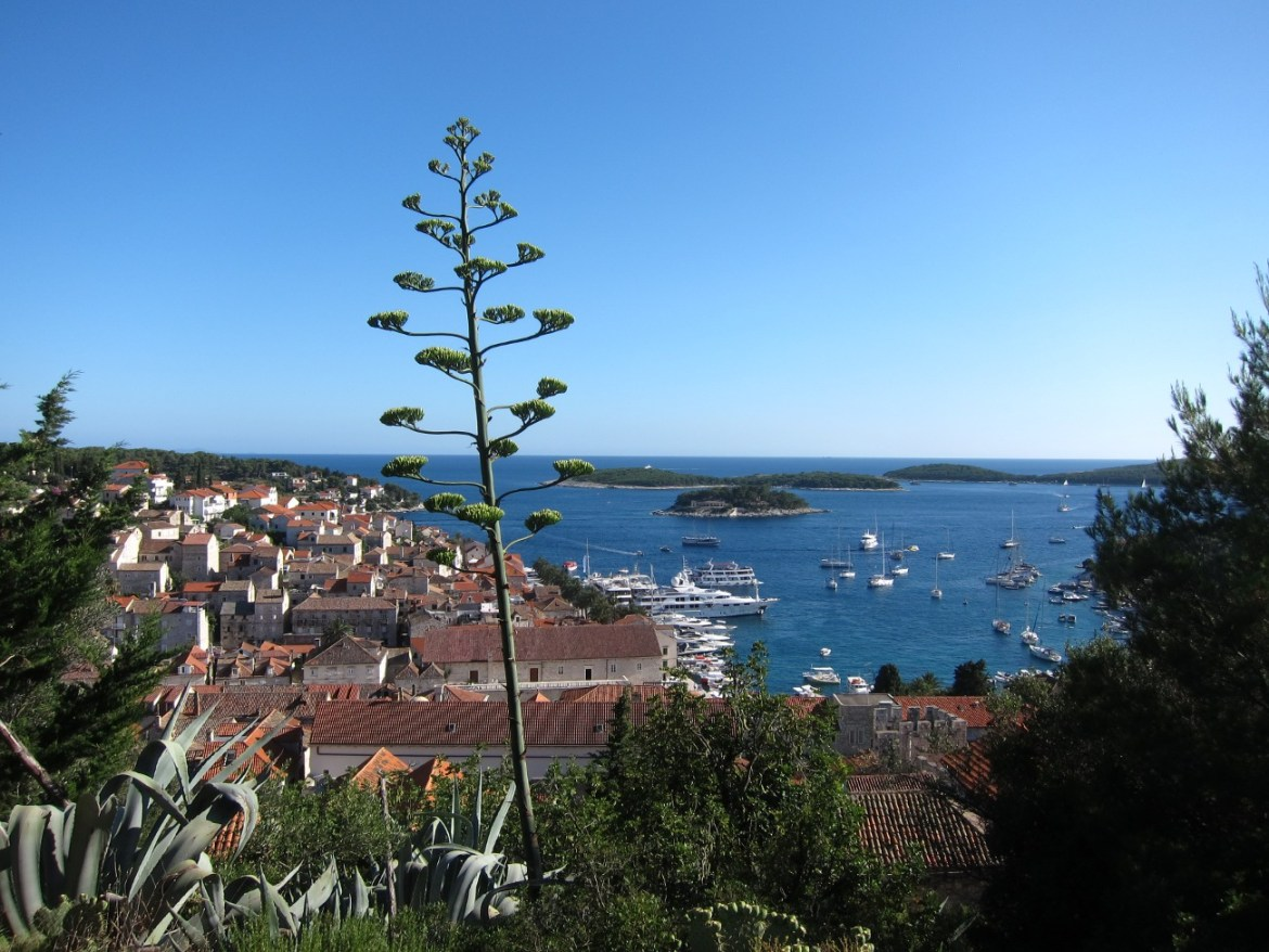 Islands of Croatia – Hvar the Celebrity