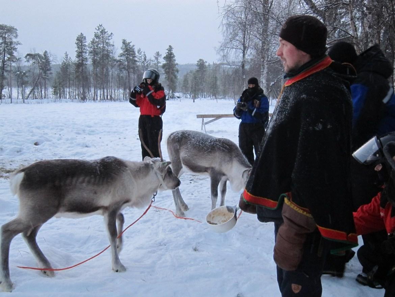 Hanupekka the Reindeer Herder