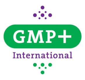 gmp-international