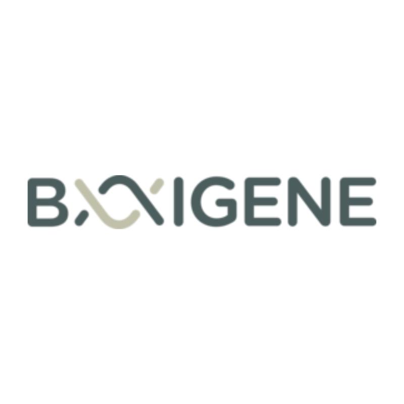BAIGENE-LOGO