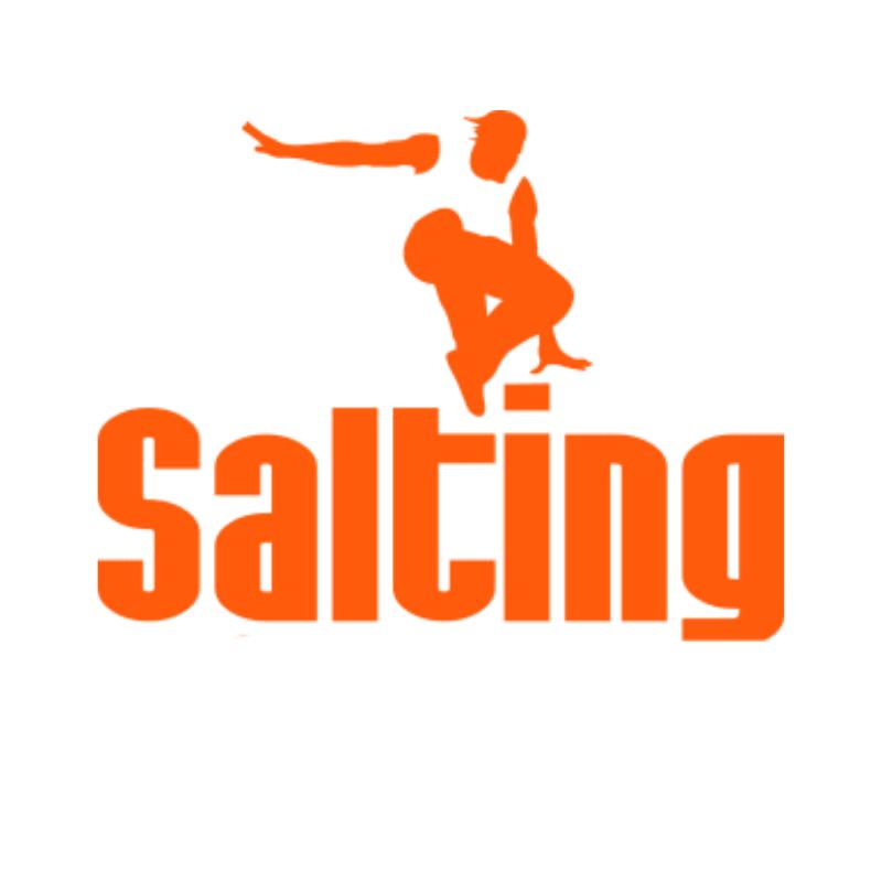 Franquicia-Salting-logo
