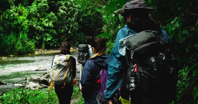 Hiking Forest River People  - Christ_S_Zambrano / Pixabay