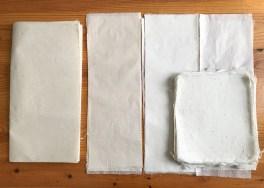Papier offert par Mr Sato Tomoyasu