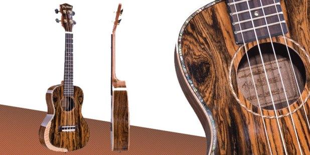 ukulele-young-meideal
