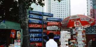 Peking: Zeichensalat