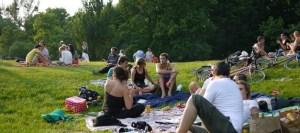 Picknick auf Wiese