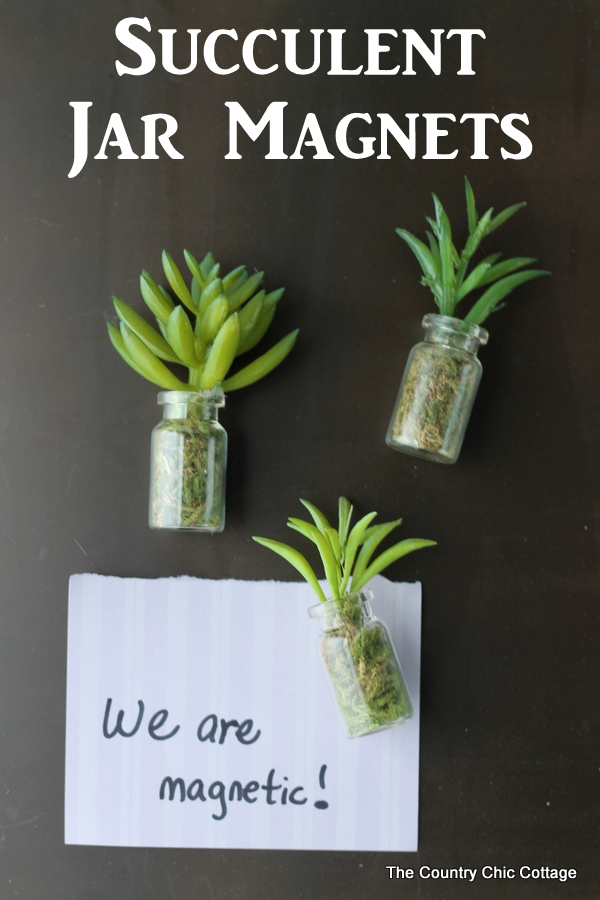 Succulent Jar Magnets