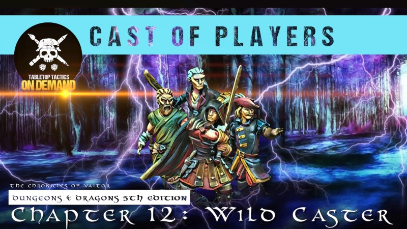 Dungeons & Dragons Cast of Players: Chapter 12 - Wild Caster