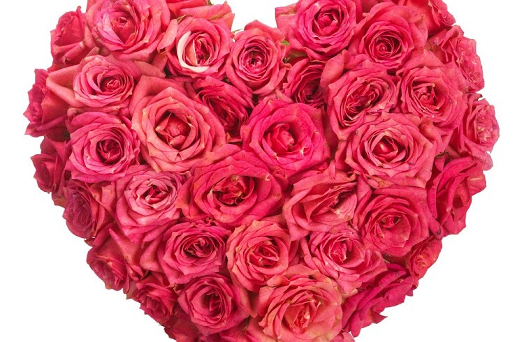 Head over to our Facebook to enter our fabulous Valentine's day competition