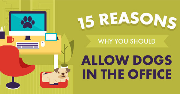 Infographic-15-Reasons-Why-You-Should-Allow-Dogs-in-the-Office-315